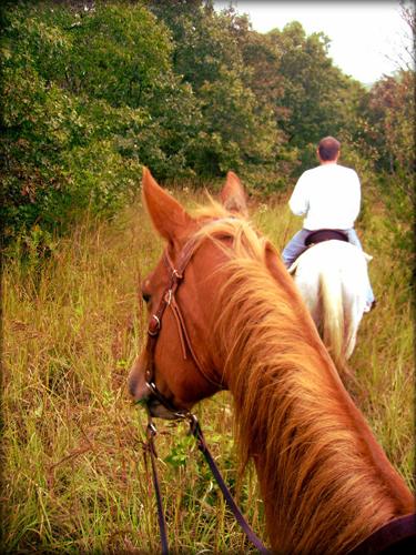 trail riding iowa