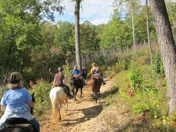 Horseback Riding Big South Fork Recreation Area