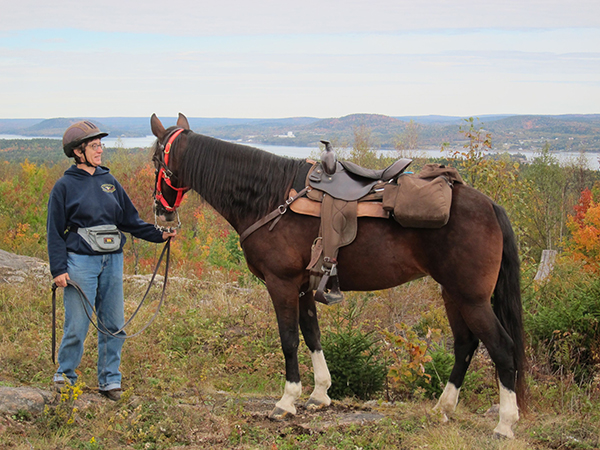 horse and rider at trimble mountain in maine
