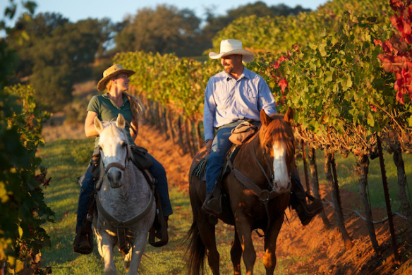 Triple Creek Ranch Vineyard Ride