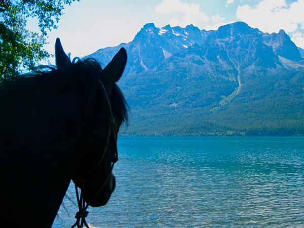 tsylos snow capped horseback