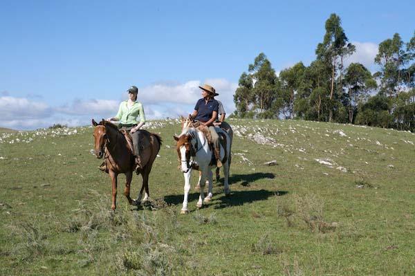 Uruguay horse riding