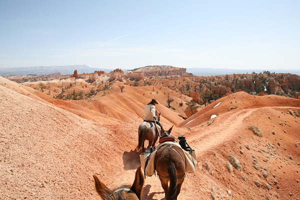 utah horseback riding bryce canyon