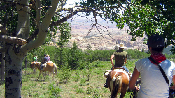 utah mountains horseback riding trails