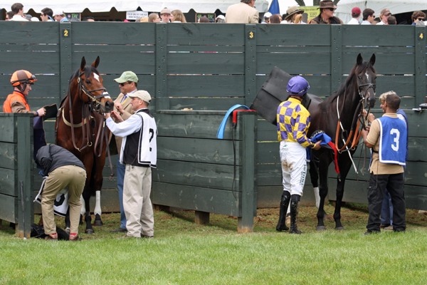 Virginia Gold Cup Riders Up