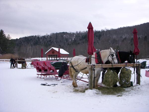 gentle giants sleighs