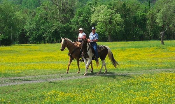 Virginia horse riding graves