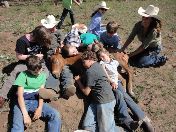 Vista Verde Foal Clinic with Kids