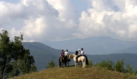 Riders trek through mountains, meadows, and forests on one of the oldest horse breeds in the world.