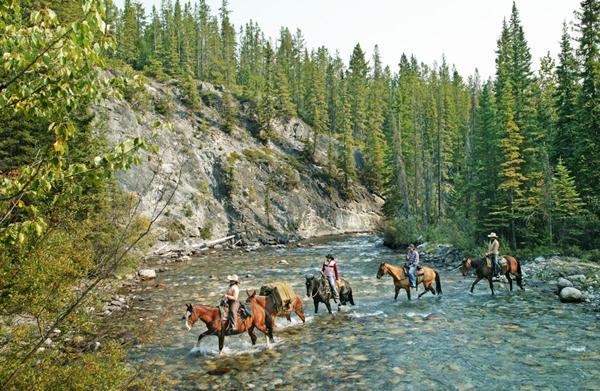 warner guiding alberta horseback riding canada