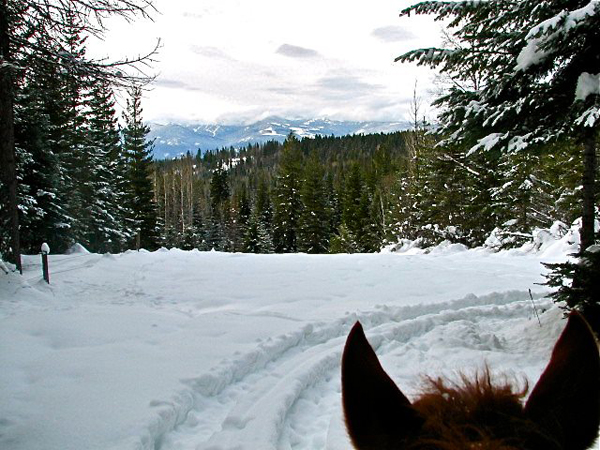 western pleasure ranch horseback riding in the snow