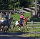 western pleasure ranch travel deals