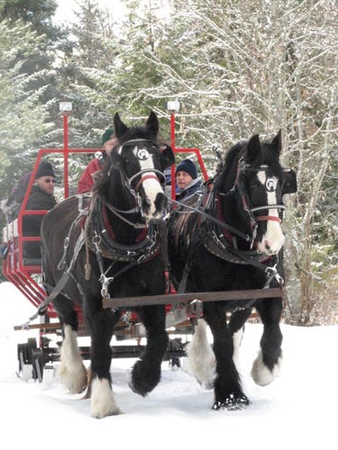 western pleasure guest ranch sleigh ride