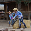 White Stallion Ranch Arizona Travel Deals