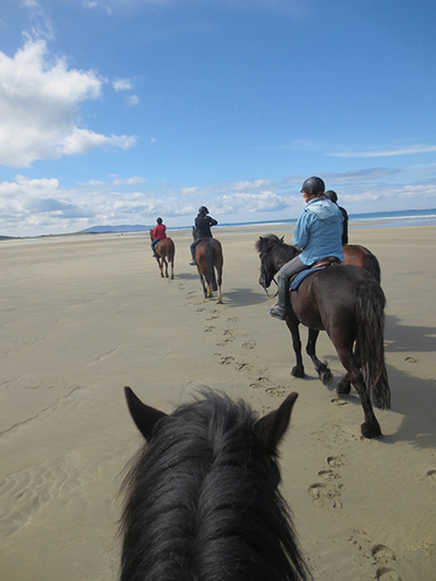 wild atlantic way ireland equestrian vacations