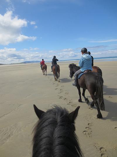 wild atlantic way ireland equestrian vacations