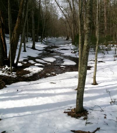 Winter Horse Riding Sprague Land Preserve