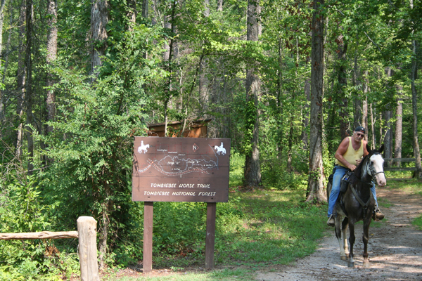 witch dance trail head at natchez trace national scenic trail mississippi