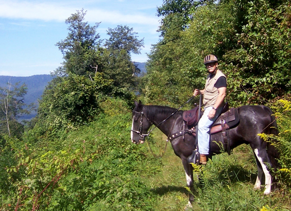 wolf ford horseback riding pisgah