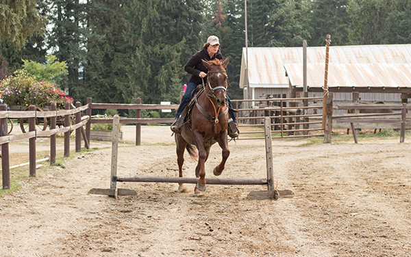 woman jumping horse western pleasure guest ranch
