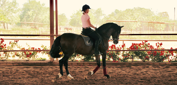 jan norman riding at epona equestrian center spain