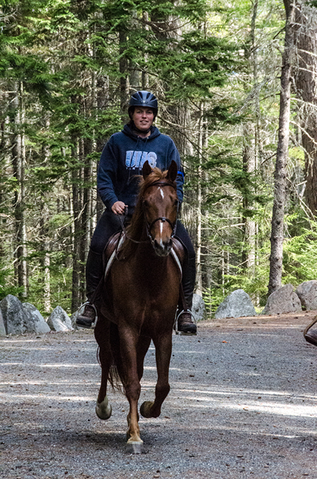 woman riding horse in acadia national park