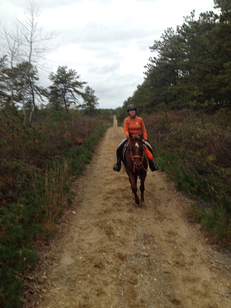 woman ridiing horse on trails at myles standish state forest in massachusetts