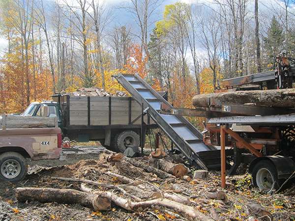 wood cutting season in maine