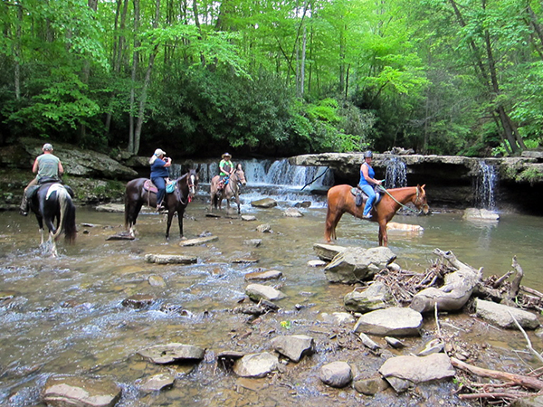 WV Waterfalls horseback riding trails