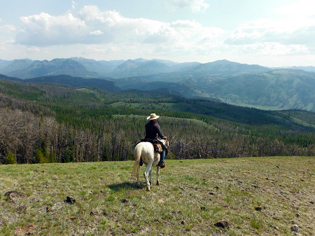 wyoming horseback riding t cross ranch