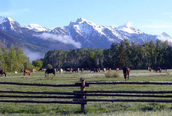 wyoming dude ranches