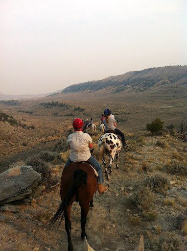 wyoming horse riding ranches horse works