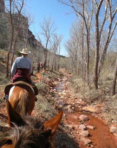 zion horseback adventure