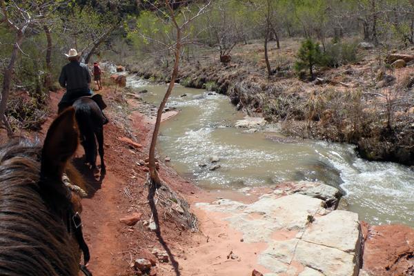 zion horseback trails