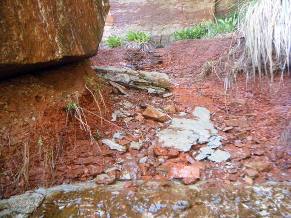 Zion terrain